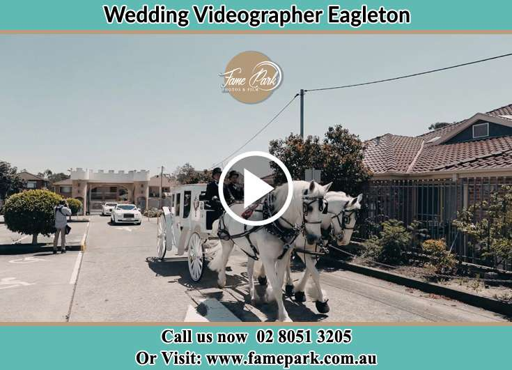 The wedding carriage Eagleton NSW 2324