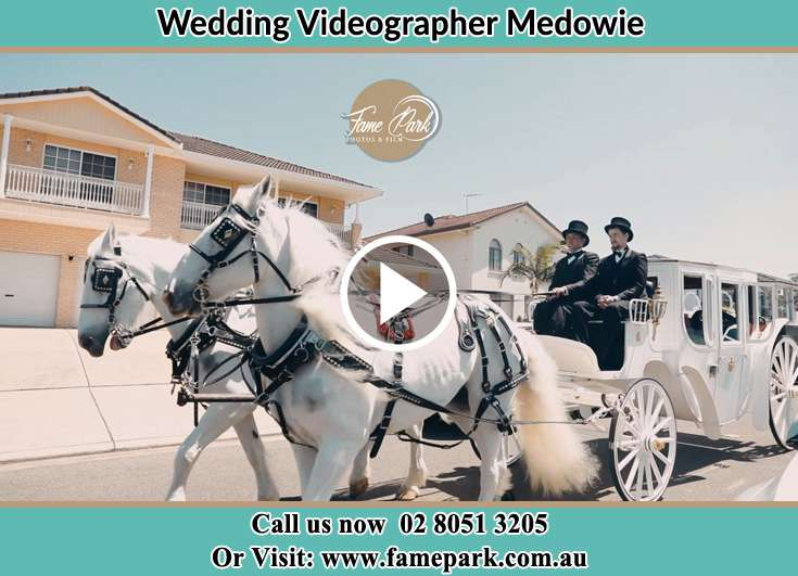 The wedding carriage Medowie NSW 2318